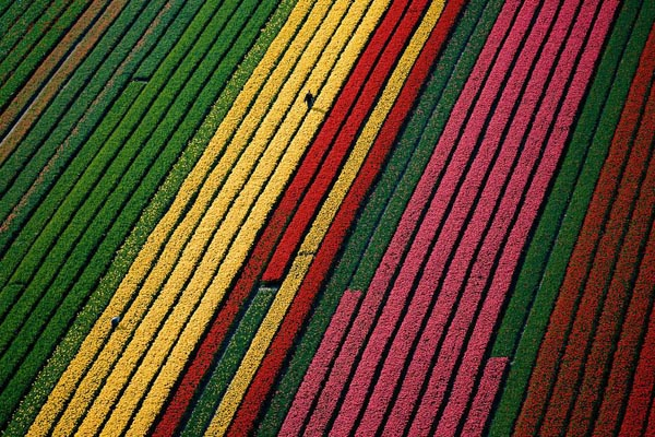 Places to visit in china - colorful rice fields